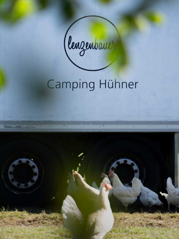 lenzenbauer_campinghuehner_04